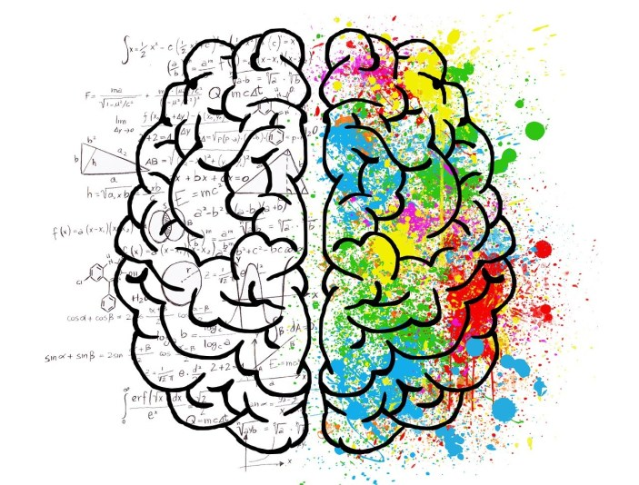 brain-2062057_1280